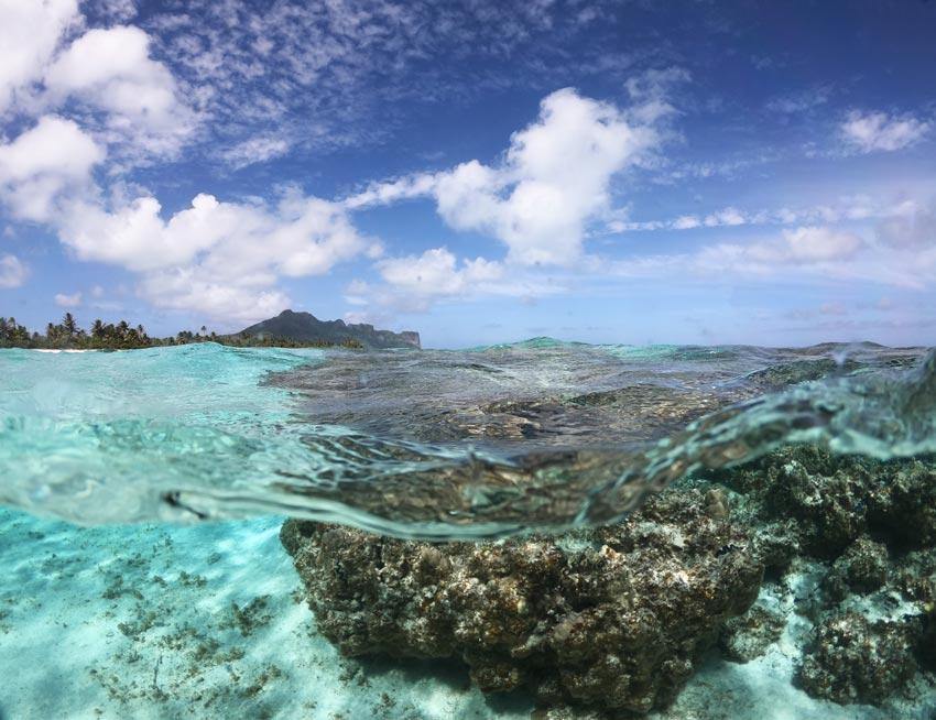 coral reef - motu auira - Maupiti - French Polynesia