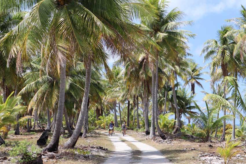 family cycling in coconut grove - tikehau - french polynesia