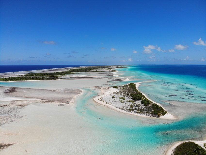 pink sand beach 10 - tikehau lagoon tour - french polynesia