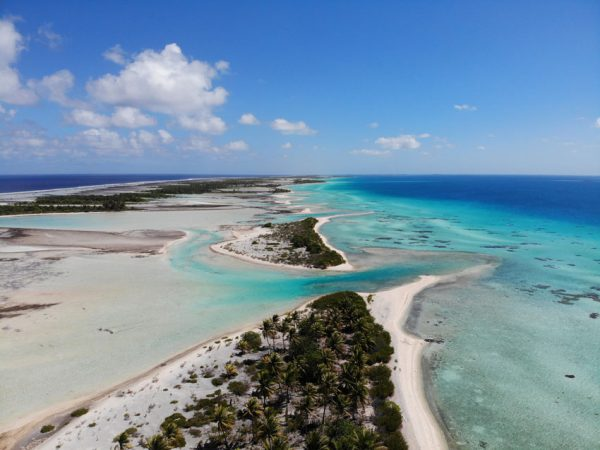 pink sand beach 2 - tikehau lagoon tour - french polynesia