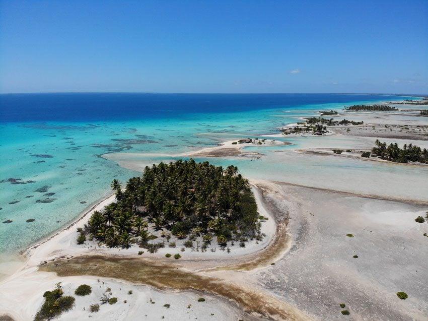 pink sand beach 6 - tikehau lagoon tour - french polynesia