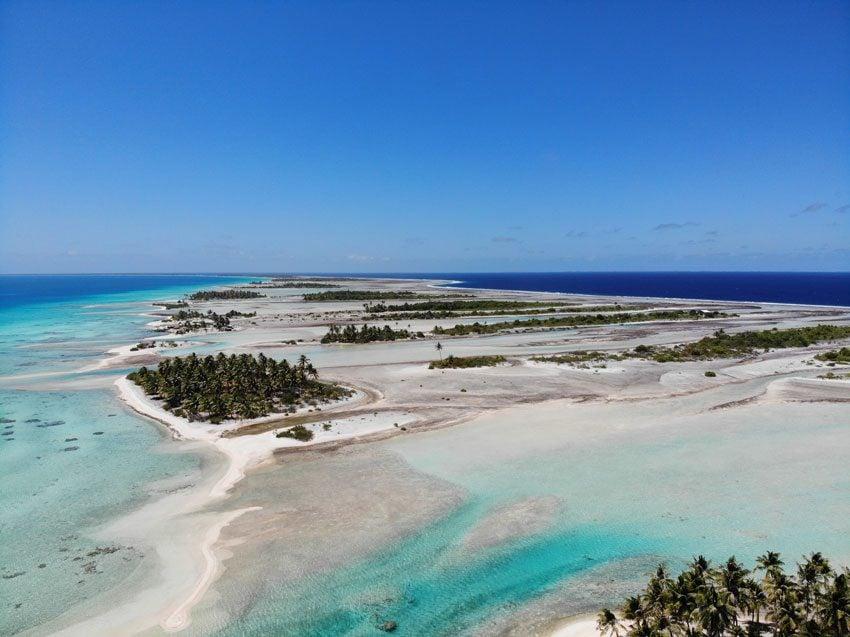 pink sand beach 7 - tikehau lagoon tour - french polynesia