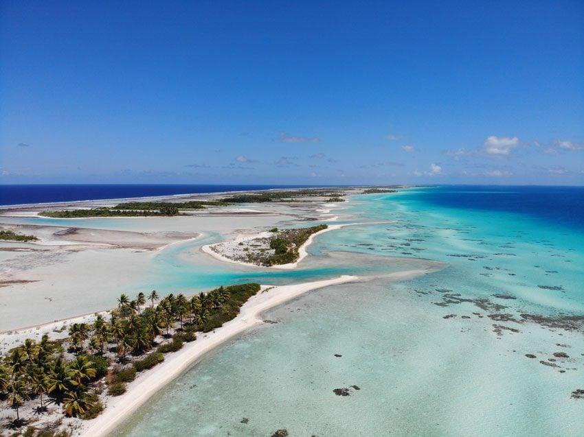 pink sand beach 8 - tikehau lagoon tour - french polynesia