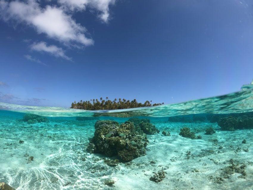 snorkeling in tikehau lagoon - french polynesia