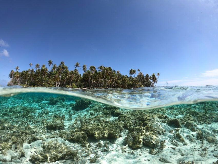 the motu of - ninamu resort - tikehau - frech polynesia