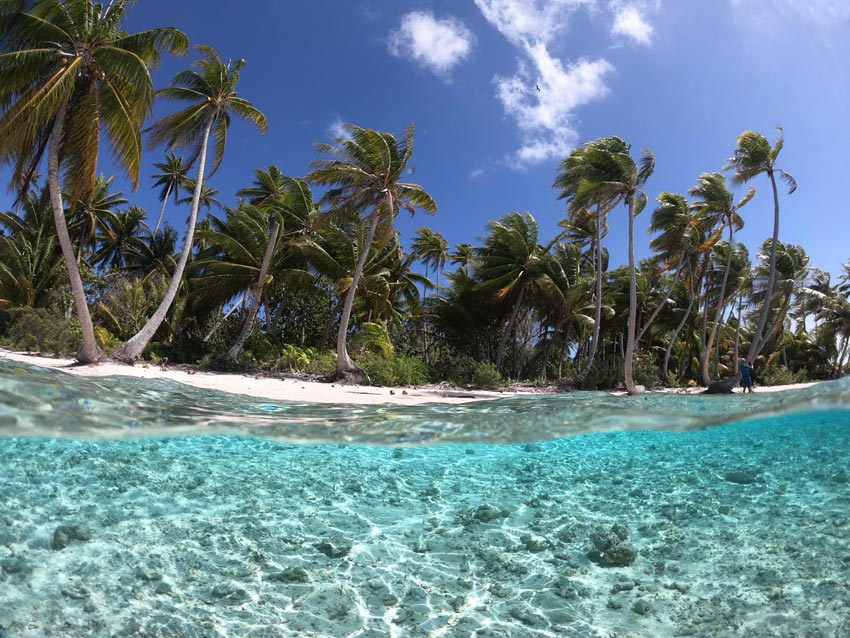 tropical beach - ninamu resort - tikehau - frech polynesia