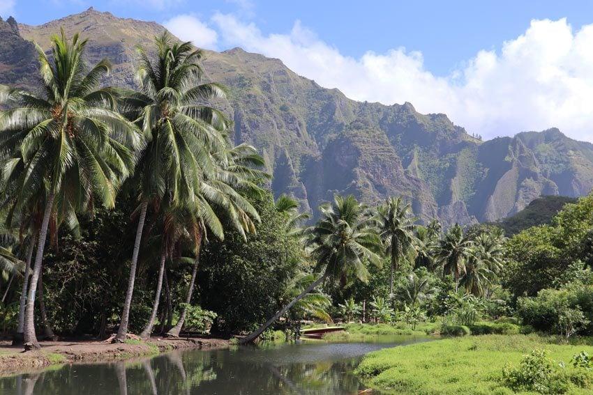 Hike to Vaipo Waterfall - Hakaui Valley - nuku hiva - marquesas islands - french polynesia