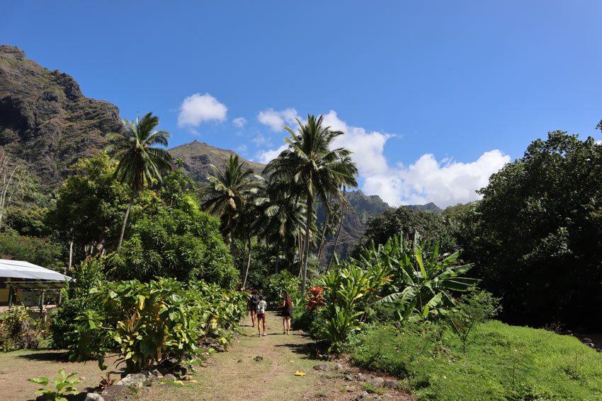 Vaipo Waterfall Hike - Hakaui Valley - nuku hiva - marquesas islands - french polynesia