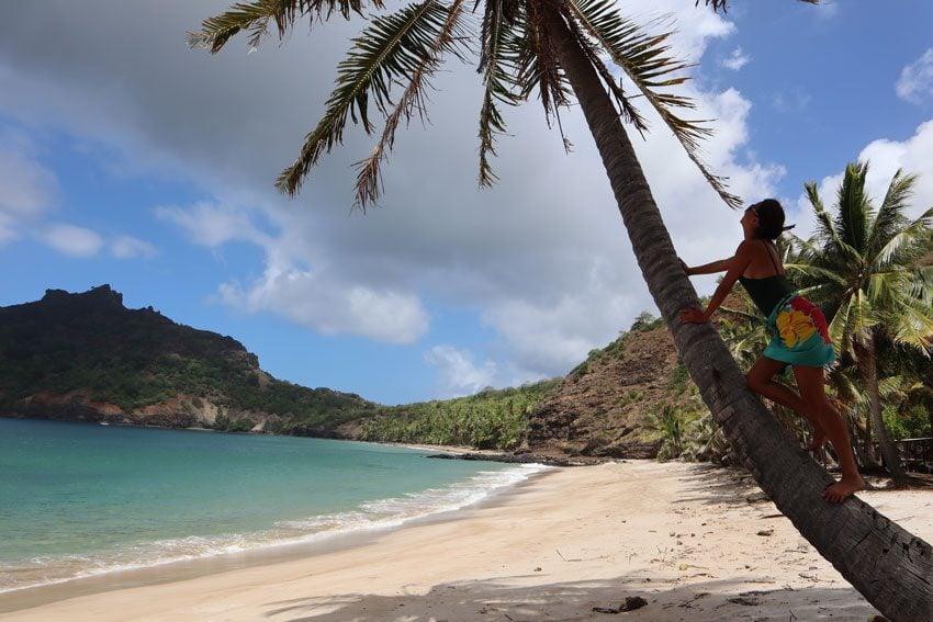 dricia climbing coconut tree in Anaho Bay - nuku hiva - marquesas islands - french polynesia