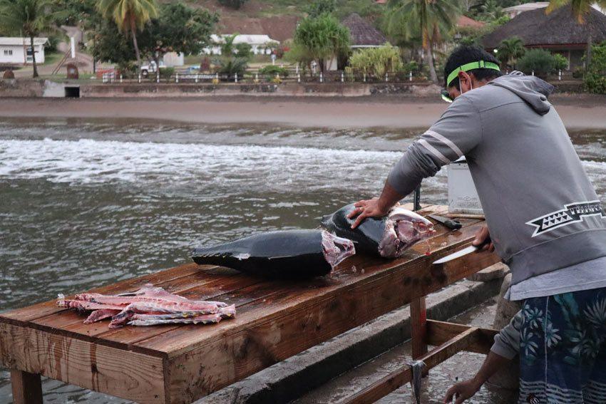 fisherman cleaning tuna - nuku hiva - marquesas islands - french polynesia