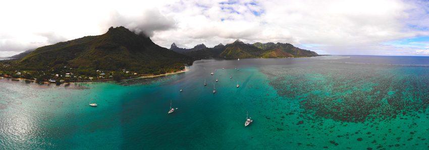 panoramic view opunohu bay moorea - french polynesia