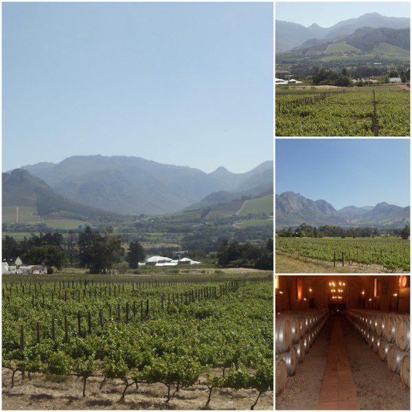 Haute Cabrière Western Cape