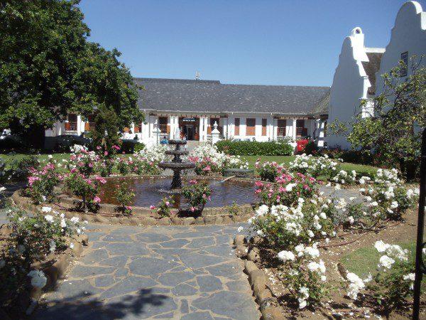 Stellenbosch Western Cape