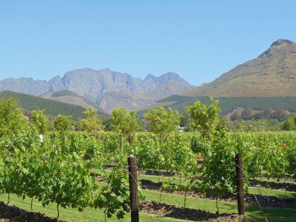 La Motte Western Cape