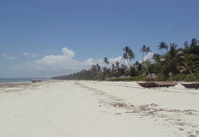 Matemwe Tropical Beach Zanzibar