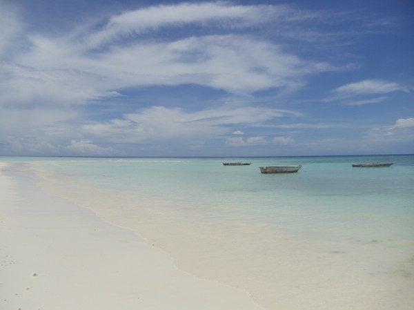 Beach off Mnemba Island Zanzibar