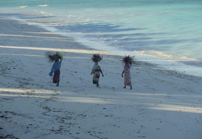 Ras Nungwi Tropical Beach Zanzibar